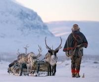 Transun Lapland - Arctic Spirit