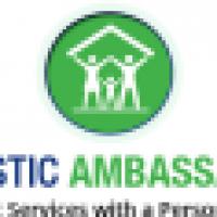Domestic Ambassadors Ltd - www.domesticambassadors.uk