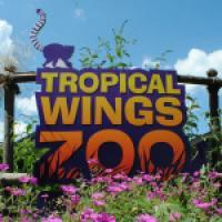 Tropical Wings Zoo www.tropicalwings.co.uk