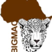 Bigmac Africa Safaris - www.bigmacafricasafaris.com