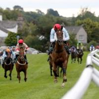 Foxtrot Racing Syndicates - www.foxtrotracing.com