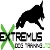 Extremus Dog Training Ltd - www.extremusdogtraining.co.uk