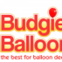 Budgies Balloons - www.budgiesballoons.com