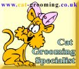 Cat Grooming Specialist - www.pet-universe.co.uk