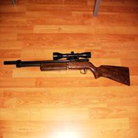 Sharp Innova .22