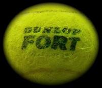 Dunlop Fort
