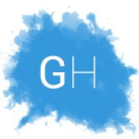 Geko Hosting Solutions - gekohosting.com